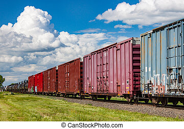 A Colorful Line of Railway Boxcars in Summer
