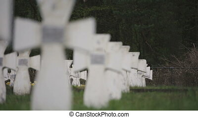 Cemetery of white military crosses 2 - Cemetery of white...
