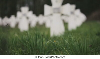 Cemetery of white military crosses 3 - Cemetery of white...