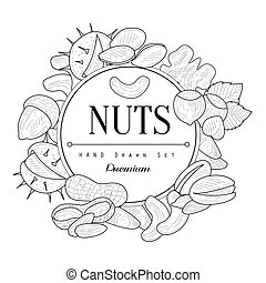 Nuts Collection Vintage Sketch - Nuts Collection Vintage...
