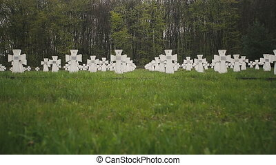 Cemetery of white military crosses 5 - Cemetery of white...