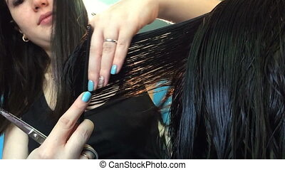 Hairdresser cuts female hair by means of scissors. Video...