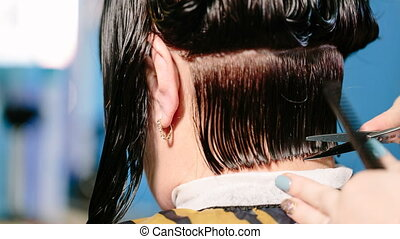 Hairdresser cuts female hair by means of scissors the rear...