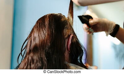 Hairdresser dye the hair to the client. Video full hd.