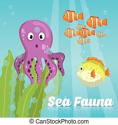 Sea Fauna graphic design, vector illustration