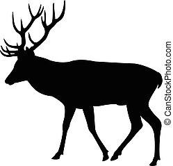 Elk Deer Silhouette - Elk deer silhouette on a white...
