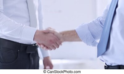 two businessmen shaking their hands - business handshake -...