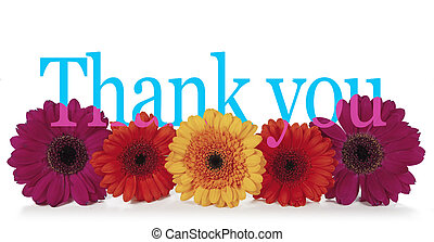 Saying Thank you with Flowers - Five dahlia heads facing...
