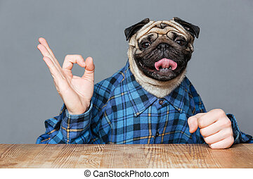 Man with pug dog head sitting and showing ok sign - Man with...