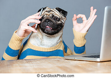 Happy man with pug dog head talking on cell phone and...