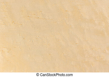 Birdseye Maple Wood Texture - A close-up of polished...