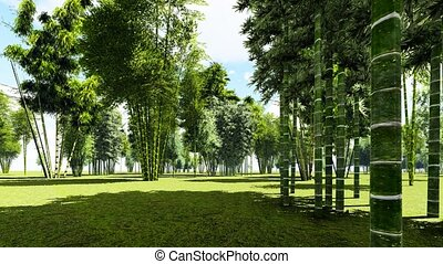 Bamboo forest animation - Beautiful decarative bamboo forest...