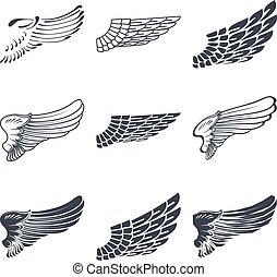 Set of wings isolated on white