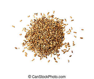 Silybum marianumMarian ThistleMilk Thistle seeds isolated on...