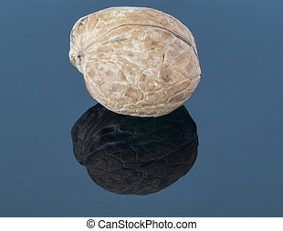 Walnut on a dark background. With reflection in the foreground