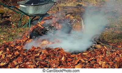 Bonfire with burning leaves
