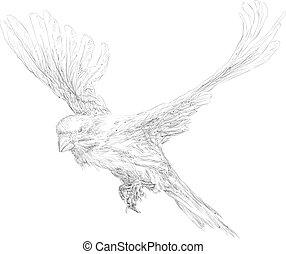 Flying bird over white background vector illustration