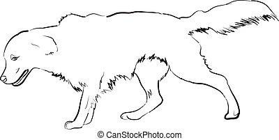 Golden Retriever - Vector image of an golden retriever dog...