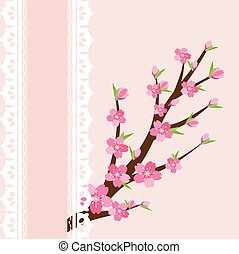 Cherry blossom branch on pink background