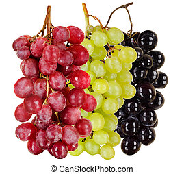 grapes - still life black, green, red bunch of grapes close...