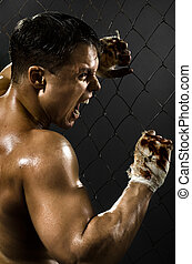 street fighter - vertical photo muscular young guy...