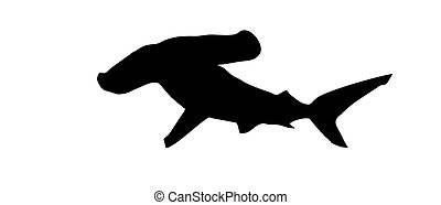 hammerhead silhouette on a white background