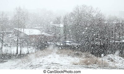 heavy snowfall on the background of black tree without...