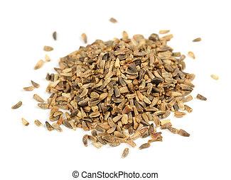 achicoria, semillas, aislado, en, blanco, Plano de fondo,