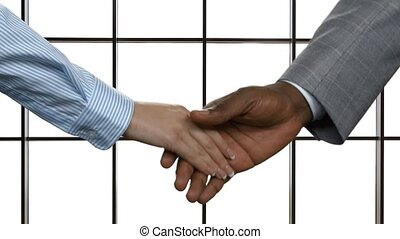 Woman shaking black man's hand. Businesscouple's handshake...