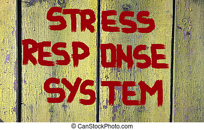 Stress Response System Concept