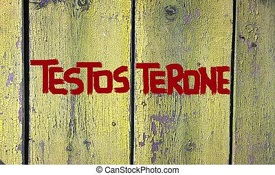 concepto, Testosterona