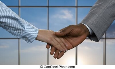 Afro businessman shaking female hand. Business handshake on...