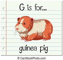 Flashcard letter G is for guinea pig illustration