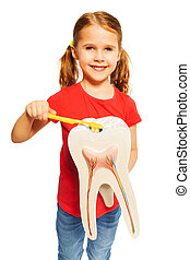 Smiling girl brushing tooth model with toothbrush - Smiling...