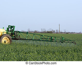 Rape spraying. - A student spraying a field of rape.