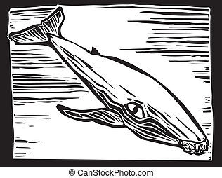 Humpback Whale - Woodcut vintage style image of a humpback...
