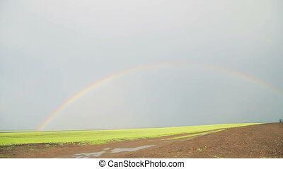 Rainbow over the bright green fields in full HD