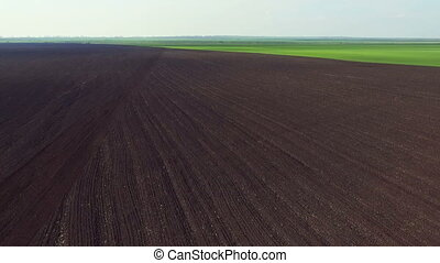 Aerial view of fields, the fertile soil, green dawning,...