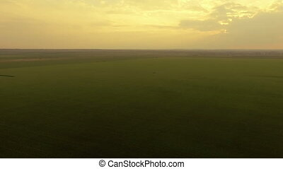 Aerial view of bright sunset on a background of green fields