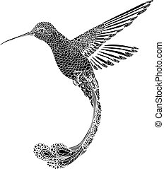 vector, Colibrí, estilo, Ilustración,  zentangle