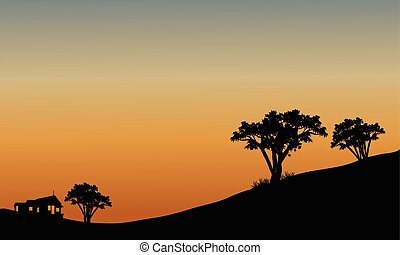 Landscape at sunset with trees