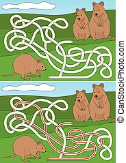 Quokka maze for kids with a solution