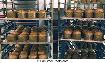 Fresh bread in trays at the bakery - Bread on racks after...