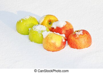 Apples in the snow - Fresh apples on snow in winter day