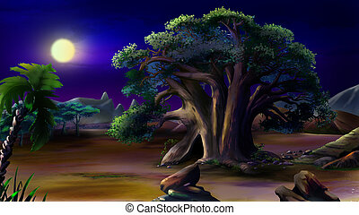 Large African baobab. Night View. - Digital painting of the...