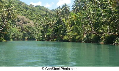 River in the jungle. Philippines. - River with green water....