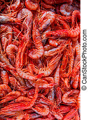 Red shrimps on a market - Red shrimps on a stand in a...