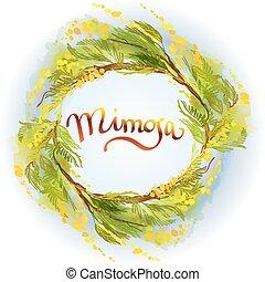 Yellow mimosa background. - Yellow green mimosa or acacia...