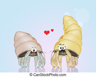 hermit crabs in love - illustration of hermit crabs in love