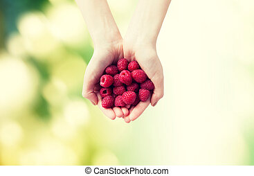 close up of woman hands holding raspberries - healthy...